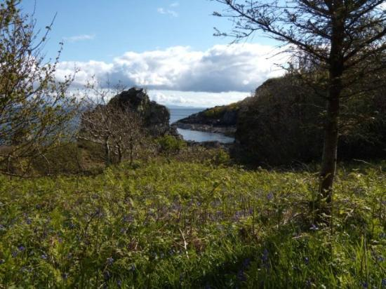 Morar Bed and Breakfast: View on the way to the beach/rocky shore