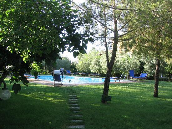Sarna Residence: Zwembad en klein deel van de tuin