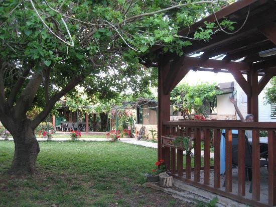 Arbel Guest House Shavit Family: Et kig i den skønne have