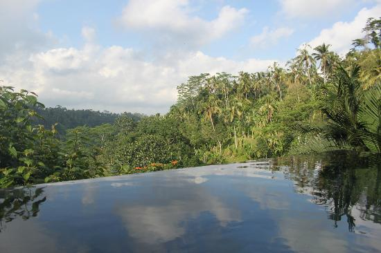 Hanging Gardens of Bali: View from our infinity pool