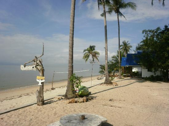 Coco Garden Resort: Blick zum Strand