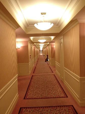 Dai-ichi Hotel Tokyo: hall corridor