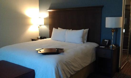 Hampton Inn West Monroe : King size bed. Comfy and clean!!