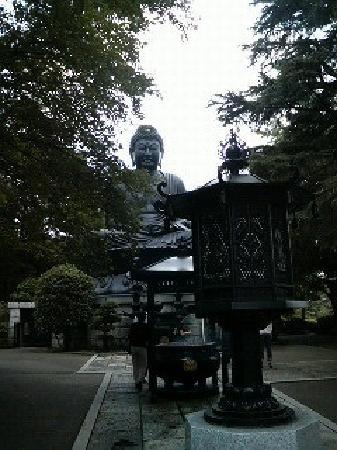 Jorenji Temple (Tokyo Daibutsu): 東京大仏