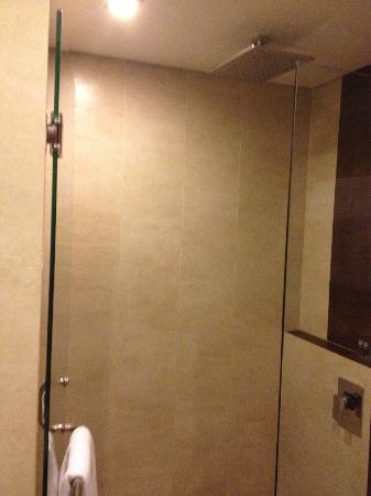 Sense Hotel Seminyak: Shower