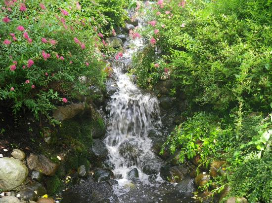 Donna's Premier Lodging: waterfall near cottages