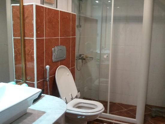 BEST WESTERN PLUS Doha: Standard bathroom