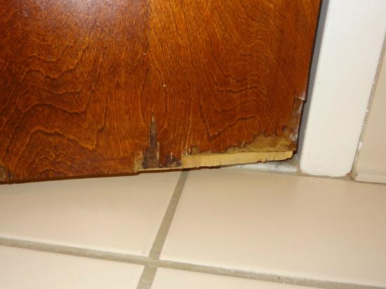 Fairfield Inn Amesbury: inside bottom of the bathroom door (toward the hinges)
