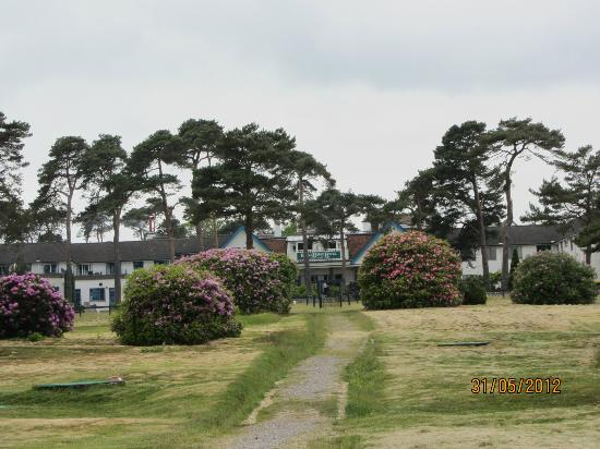 Knoll House Hotel: View through trees at front of hotel