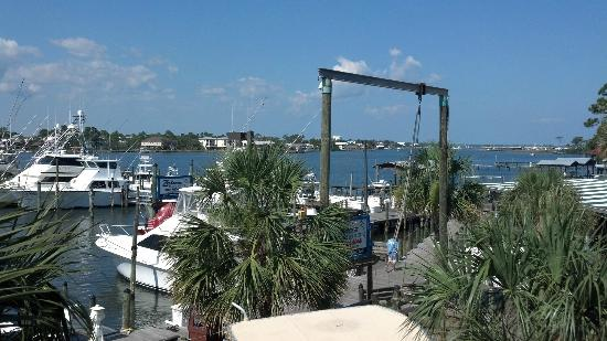Shaggy's Waterfront Bar & Grill: Great views!