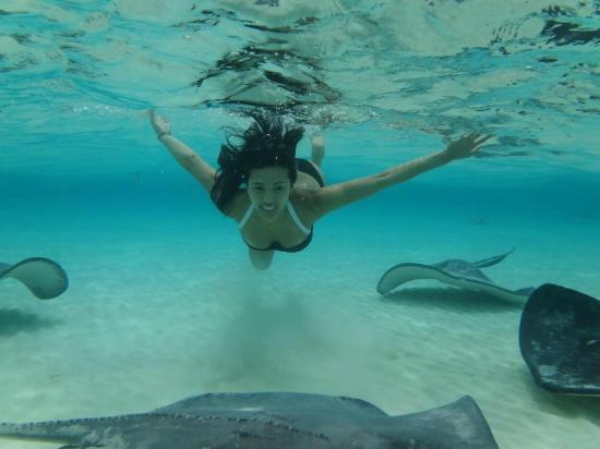 Cayman Private Charters: Sand Bar/ Stingray / MY Beautiful Lynn =) and AWESOME Photo