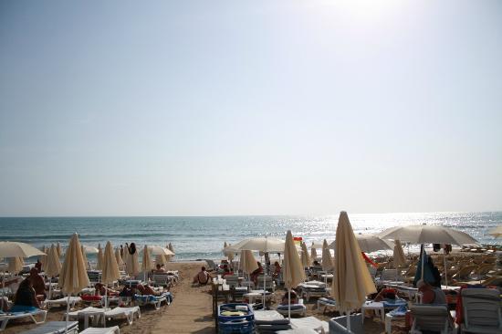 Trendy Hotels Side Beach: Vy över stranden