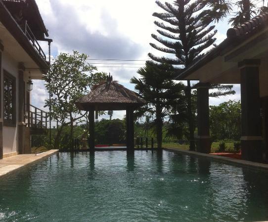 Balam Bali Villa: Vue sur la piscine