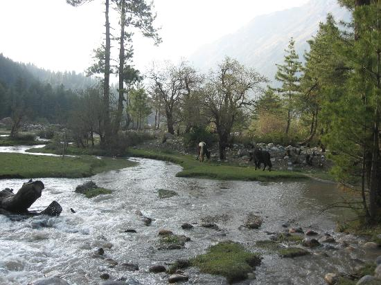 Hotel Rupin River View: anonymous rivers taking birth to die Over Baspa