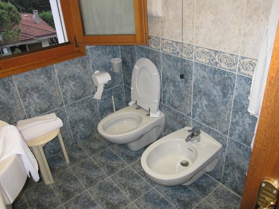 Hotel al Pino Verde: bathroom