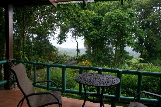 Arenal Observatory Lodge & Spa: View from our room