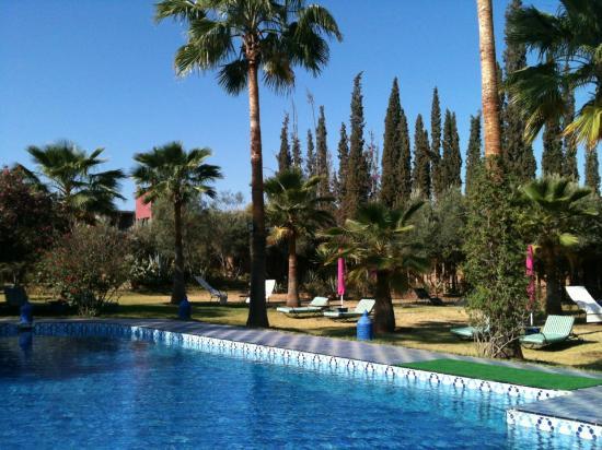 Riad Lebakoua: Piscine et Jardin