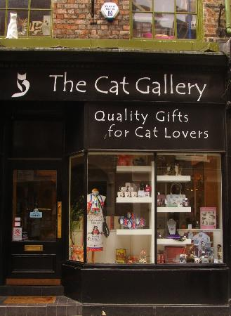 The Cat Gallery: Cat Gallery