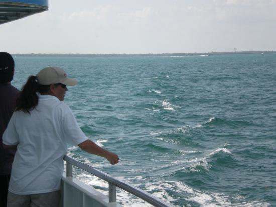 Key Largo Princess Glass Bottom Boat: On way to Reef