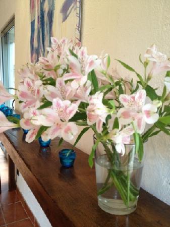 Domaine La Fauvelle: Ramo de flores frescas