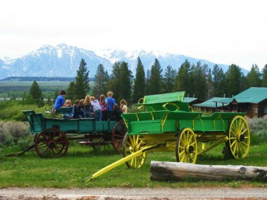 Triangle X Ranch : Kids LOVE the wagons! They also love playing nearby the stream or hide n seek in the sagebrush.
