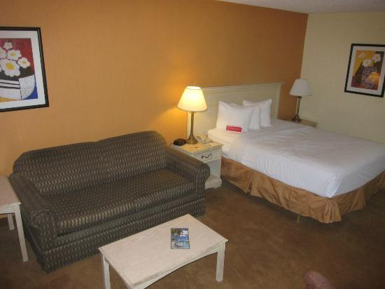 Ramada Tampa Airport Westshore: This is what my room looked like, not the beautifully redone room w/new furniture/linens/paint/e