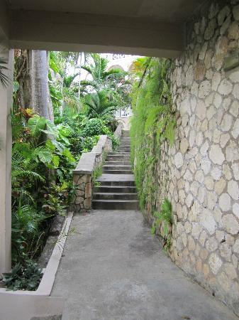 Couples Sans Souci: Stairs and more stairs