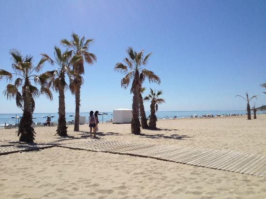 Province of Alicante, Spain: spiaggia