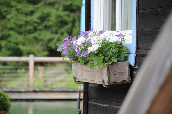 Sillberghaus Almbad & Lodge: Impressionen