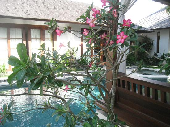 Villa Seriska Satu: View of guest rooms