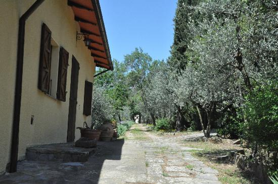 Casolare Il Condottiero: One side of the house and a walk way