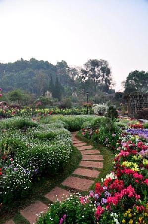 朴麦妮28迅雷种子_安康自然度假村;; 朴麦妮28部图片; angkhang nature resort - hotel