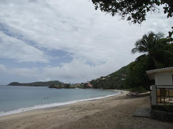 Sugarapple Inn : Friendship Bay looking south