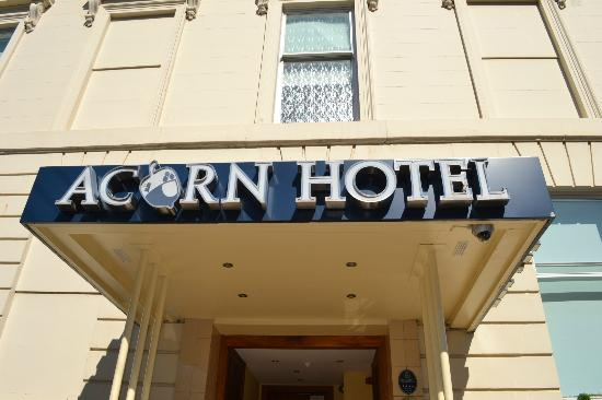 Acorn Hotel: the hotel
