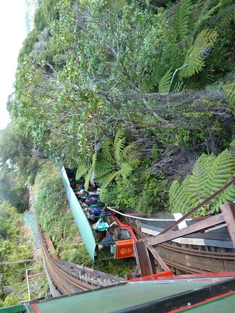 Kotuku Bach B&B Coromandel: Driving Creek Railway  Corormandel