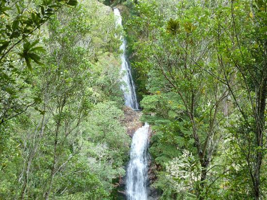 Kotuku Bach B&B Coromandel: Wentworth Falls Whangamata
