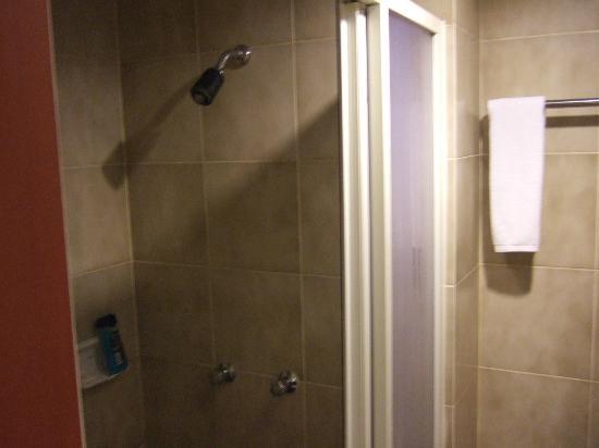 Sunshine Vista Serviced Apartment: shower general