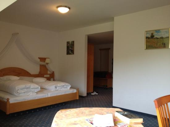 Hotel Schoene Aussicht: standard room, very large!