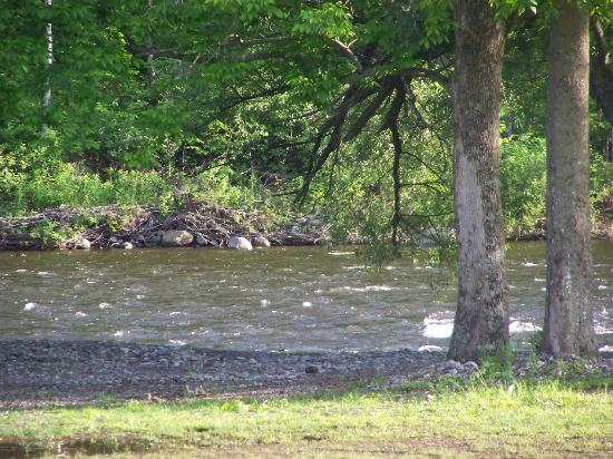 scenic river...there is tubing here during the summer