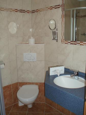 Hotel Bruggerhof: Compact but clean shower room. Note shaving mirror and mirror over vanity unit