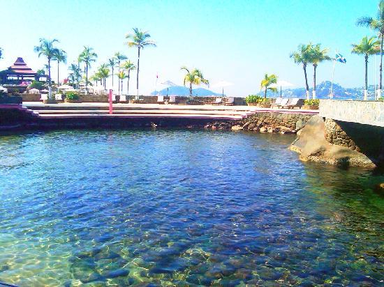 La Concha Acapulco Seafood Restaurant: Paraíso clima sensacional