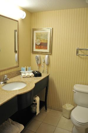 Holiday Inn Express Salt Lake City South-Midvale: sdb