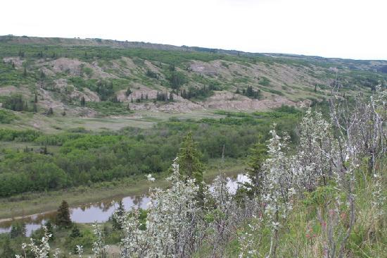Alberta, Canada: Dry Island Buffalo Jump