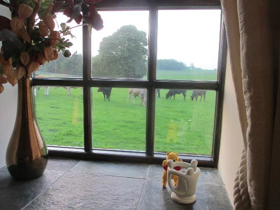 The Smithy: Looking out from room