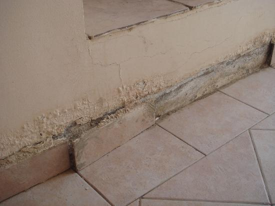 Al Diwan Resort: broken tiles