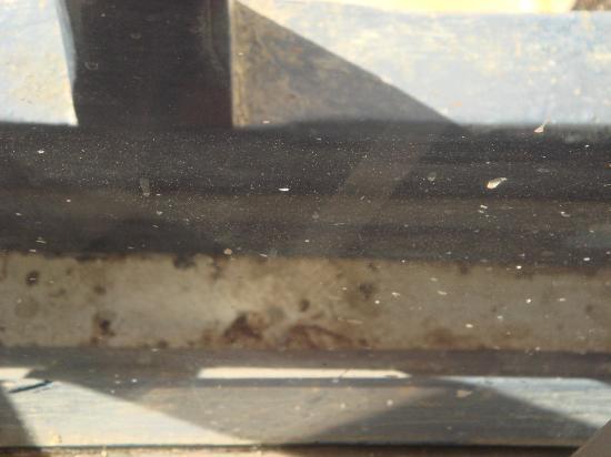 Al Diwan Resort: resteraunt window