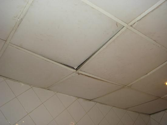 Al Diwan Resort: ceilings in toilets