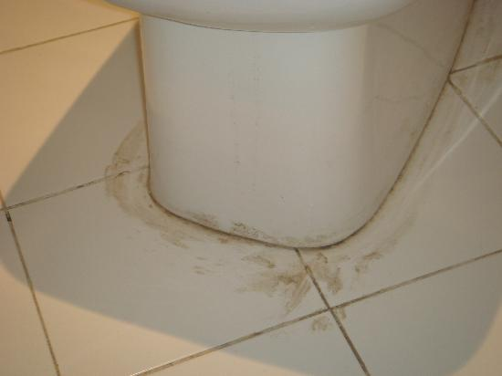Al Diwan Resort: dirty round toilet in our room