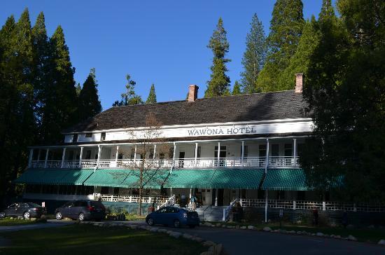 Big Trees Lodge : l'hotel le matin
