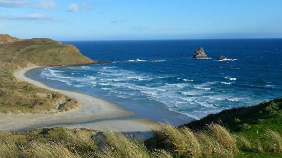 Dunedin, Nueva Zelanda: Sandfly Bay